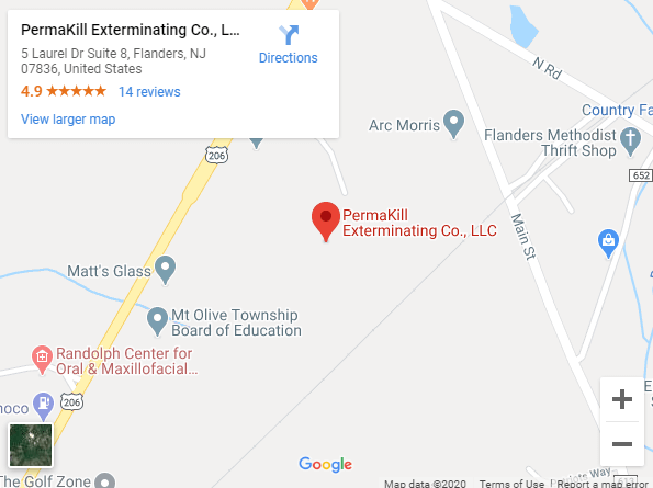 Link to Permakill Exterminating on Google Maps